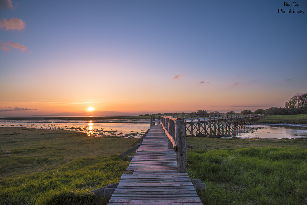 footbridge to aberlady bay nature reserve